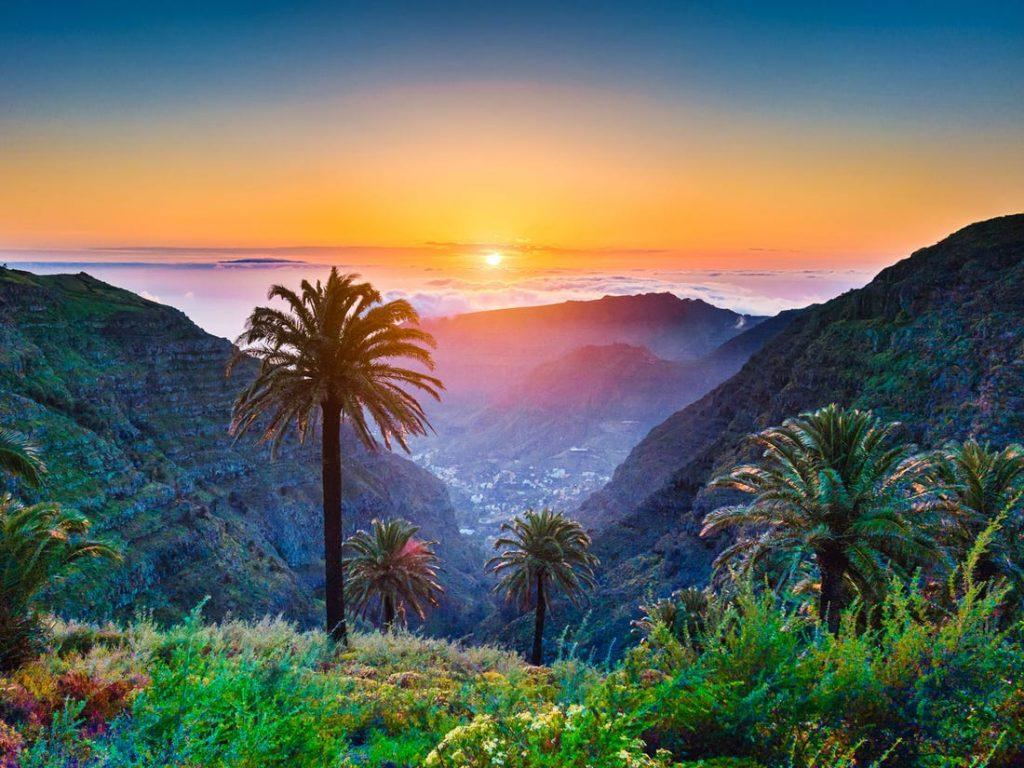 cannabis clubs Canary islands